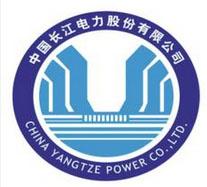四川东电集团